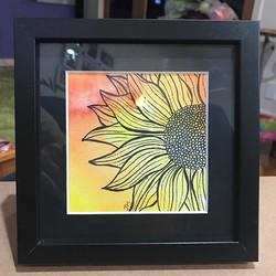 winning sunflower