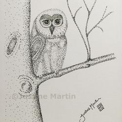 just a little owl