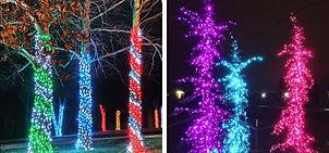 Christmas Lighting Installation 1.jpg