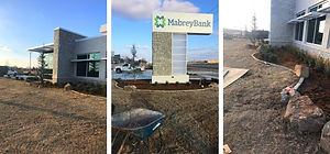 Evergreen commercial landscape design