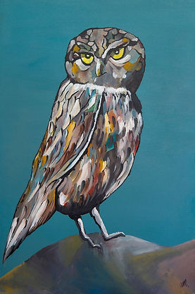 a multicoloured acrylic painted owl