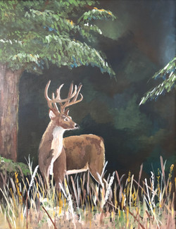 Acrylic Painting, buck in a forest