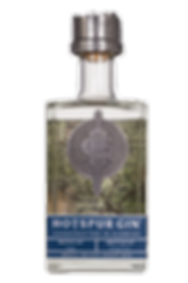 Hotspur-Gin-70--WEB.png