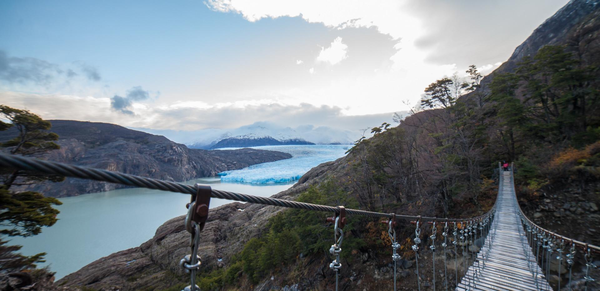 w09. Camino a Glaciar Grey.jpg