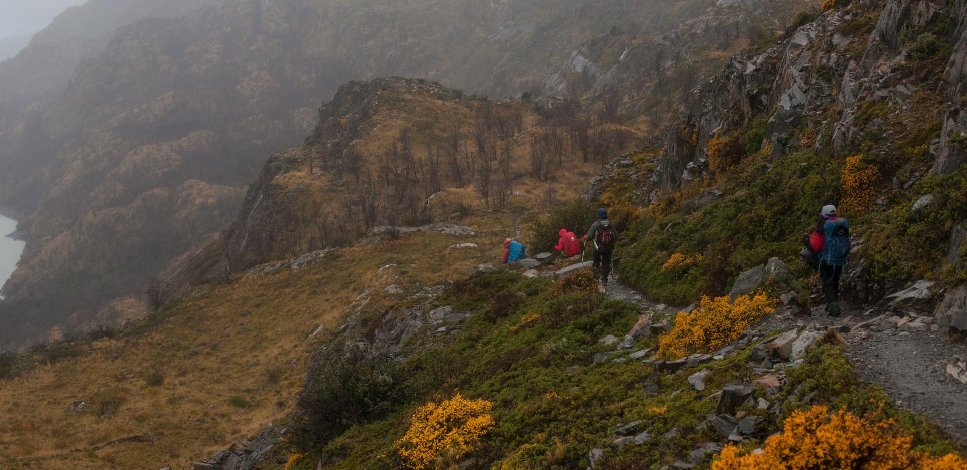 w08. Camino a Lago Grey.jpg
