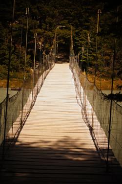 Puente Colgante Pingo