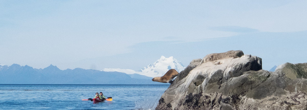 kayak lobos y sarmiento.jpg