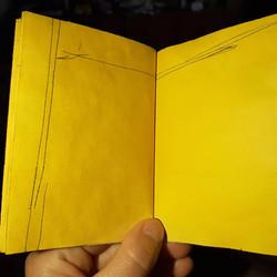 yellow book1