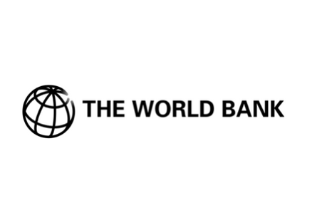 The World Bank and SheFighter