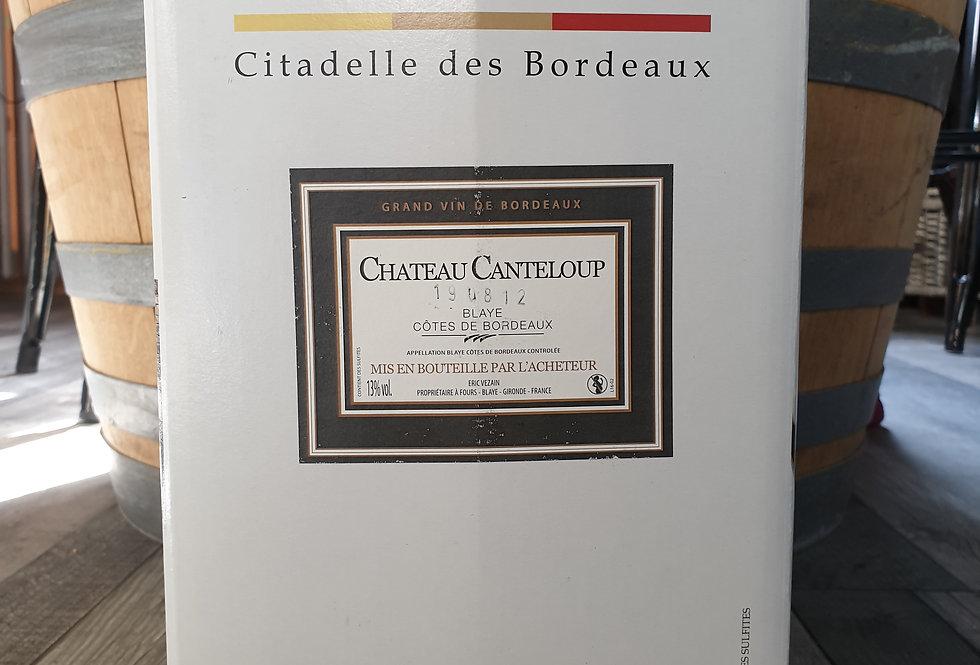 BLAYE CHÂTEAU CANTELOUP