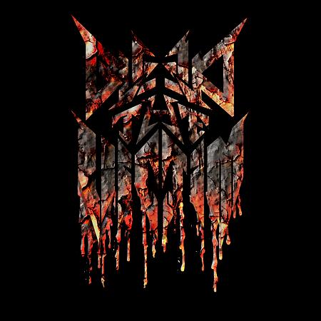 BTV Iridium Logo FF.png
