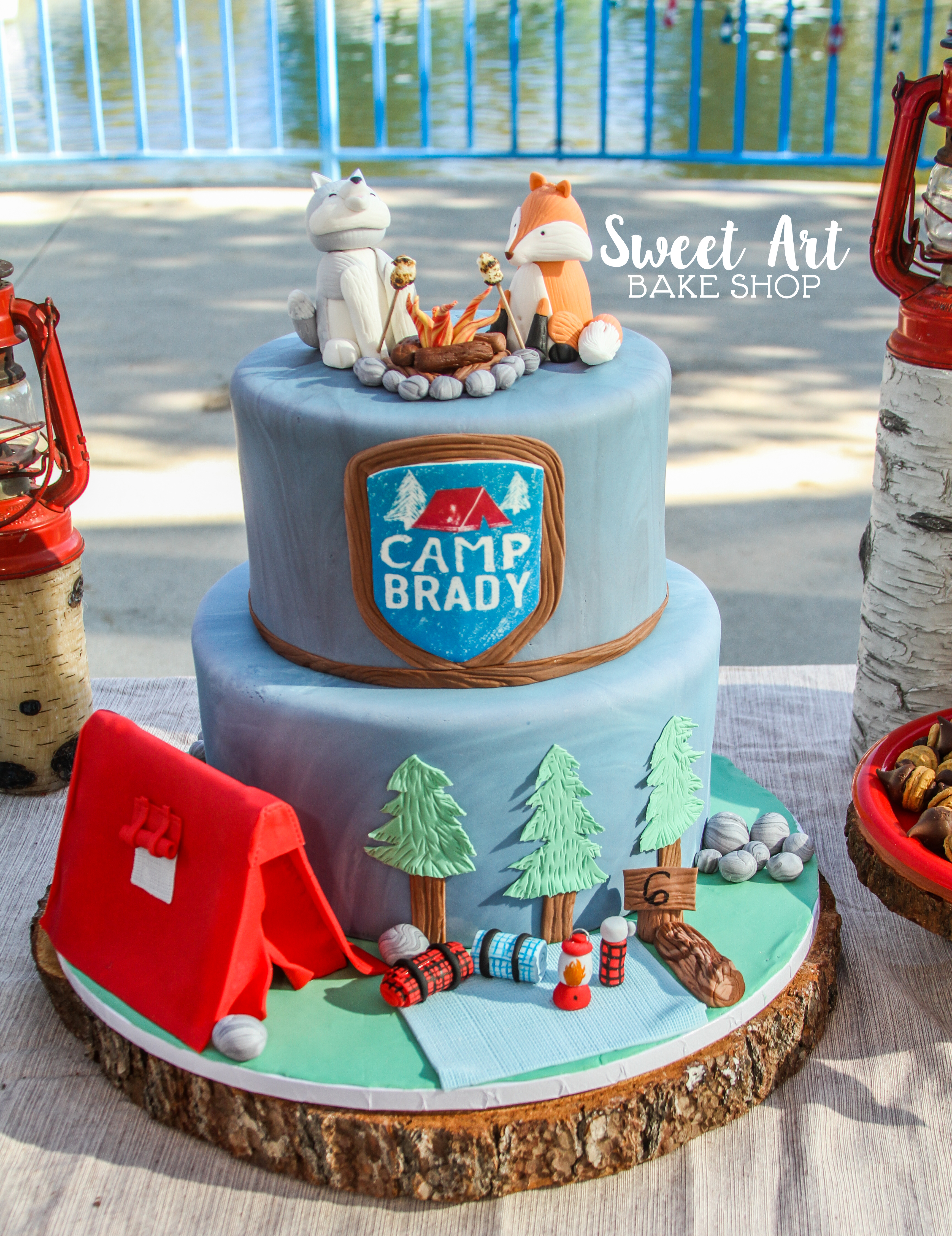 Brady's Camping Party Cake