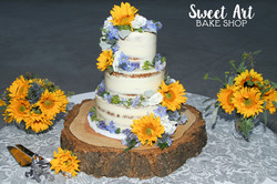 Blue & Yellow Naked Cake