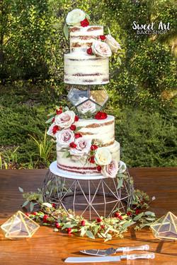 Geometric Naked Cake