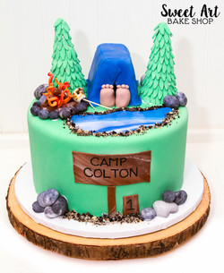 Colton's Camping Cake