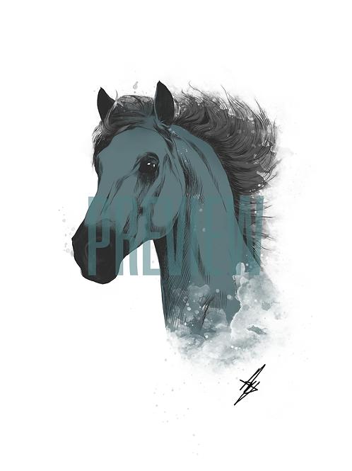 Sea Horse - A4 Signed Print
