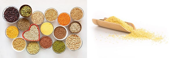 Grains and Lentils.jpg