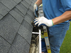 Gutter Cleaning- Riser Home Service