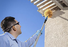 Cobweb Removal Riser Home Services