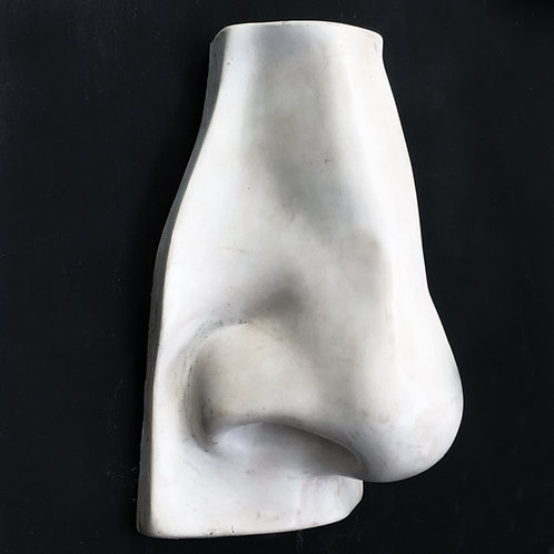 Nose from Michelangelo's David