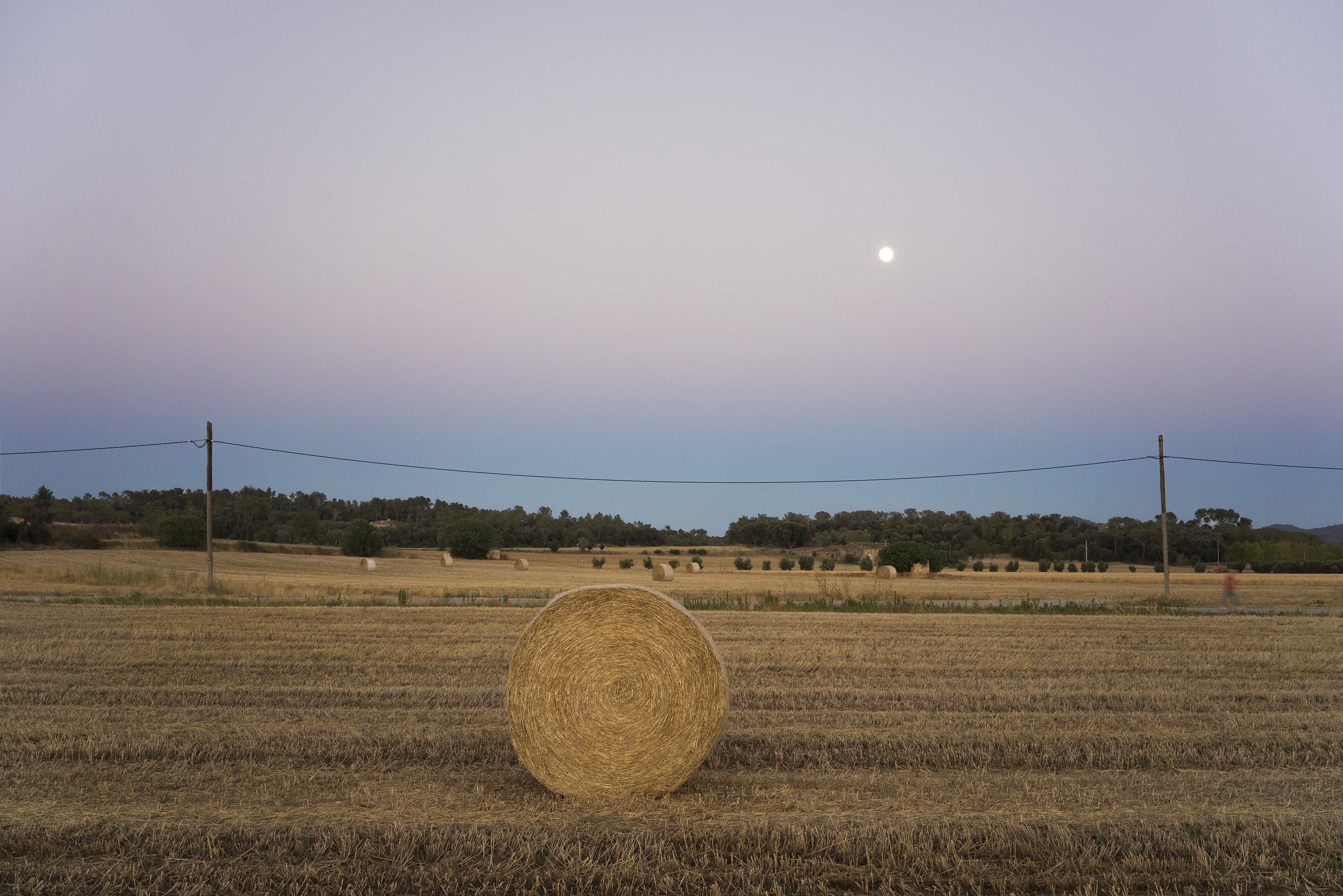 Anochecer con luna llena