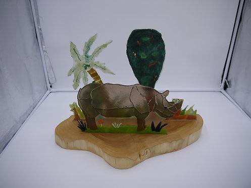 vanishing rhino