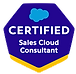 Paul-Fischer-Salesforce-Certifications_edited_edited.png