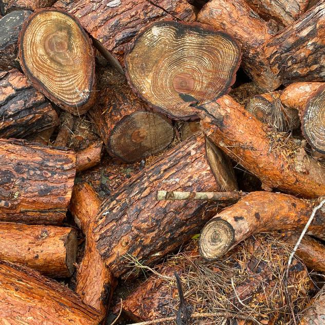 i want ur wood