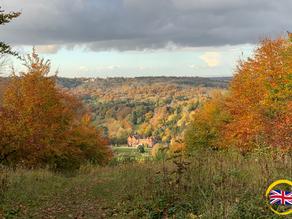 行山勝地: 薩里郡 Hiking: Box Hill, Surrey