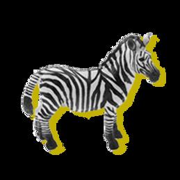 zebre.png
