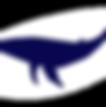 Центр путешествий, whale watch, whale watching, whale, наблюдение за китами, киты