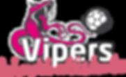 Vipers Håndballskole