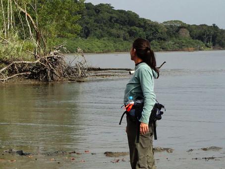 Mulheres no Monitoramento de Florestas de Mangue