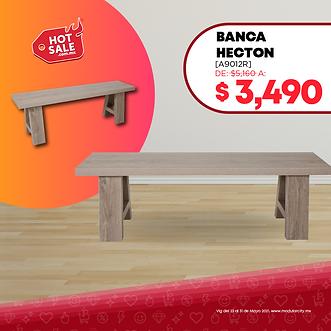 Banca_Hecton-01.png