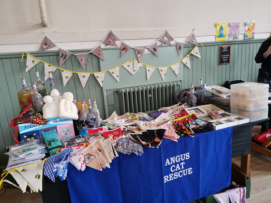 Angus Cat Rescue - Selling and Fundraising page
