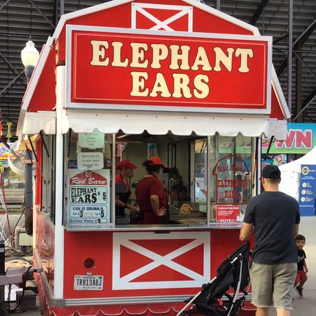 Red Barn Elephant Ears