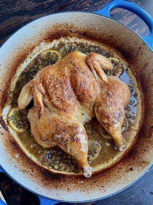 French Braised Chicken