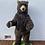 Thumbnail: Grizzly Bear