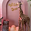 Thumbnail: Giraffe