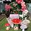 Thumbnail: Fairy Unicorn Theme