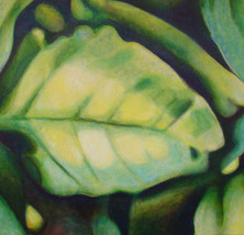 My Leaf, 100x100cm, oil on canvas, 2009