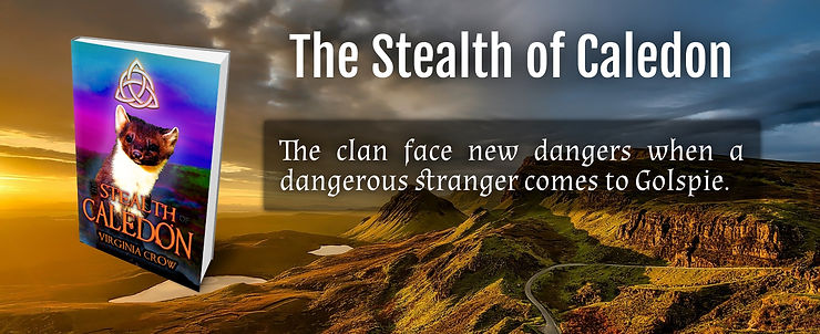 The Stealth of Caledon.jpg