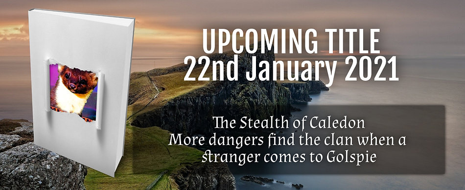 Stealth of Caledon Cover Reveal.jpg