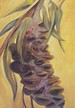 Happy Banksia