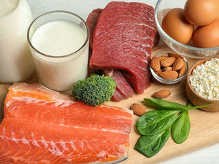 Should you go HIGH PROTEIN?