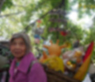 胡阿姨的花园.jpg