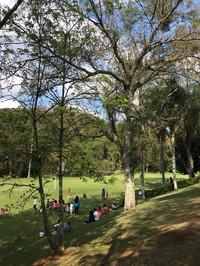Vista para campo de futebol gramado