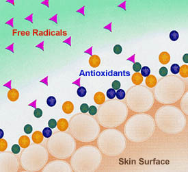 The Importance of Topical Antioxidants