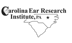 CEI Logo.png