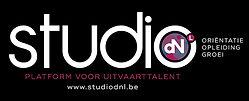 Logo-Studio-DNL-wit-small.jpg